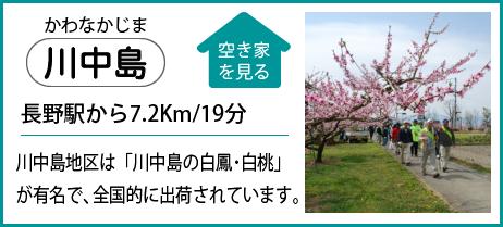 川中島 長野駅から7.2Km/19分 川中島地区は「川中島の白鳳・白桃」が有名で、全国的に出荷されています。