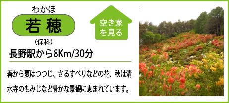 若穂(保科) 長野駅から8Km/30分 春から夏はつつじ、さるすべりなどの花、秋は清 水寺のもみじなど豊かな景観に恵まれています。