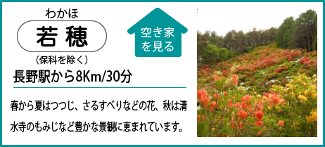 若穂(保科を除く) 長野駅から8Km/30分 春から夏はつつじ、さるすべりなどの花、秋は清 水寺のもみじなど豊かな景観に恵まれています。